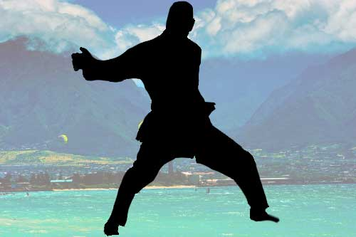 Kahului Karate Dojo